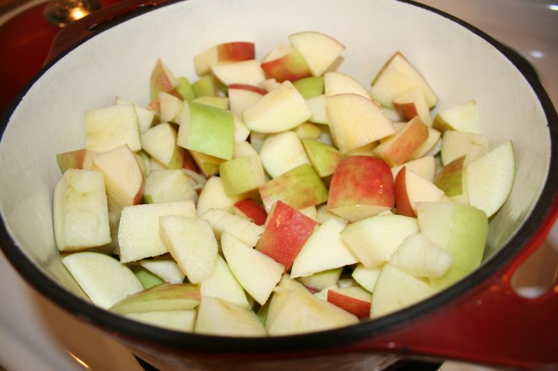Apple.sauce.and.bowls 004